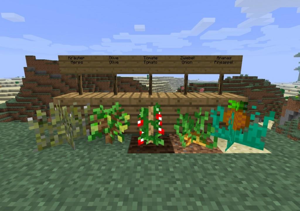Minecraft play without logging in : pitaniesug ga